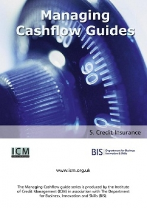 Credit Insurance - ICM & BIS Managing Cashflow Series Part Five